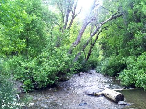 Canyon Creek_feistyharriet_June 2015