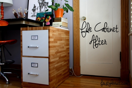 Metal File Cainet DIY_feistyharriet_July 2015 (4)